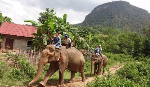 Laos 2.jpg