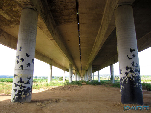 Pilares da auto estrada A17 com pássaros pintados (1) [en] Pillars of the motorway A17 with painted birds