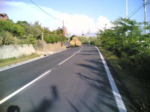 Rolos de palha a andar sozinhos na estrada? :)