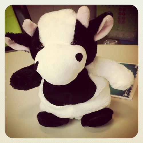 vaca julieta