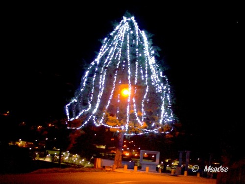 Vila de Cerva - Árvore de Natal 2016