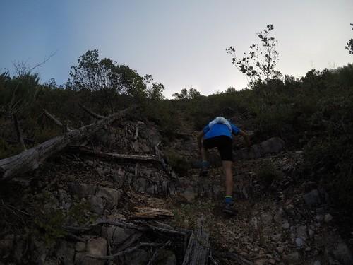 tomas trail.jpg