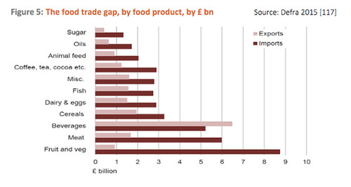 Uk-Food-Trade-Gap.jpg
