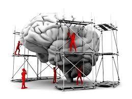 brainunderconstrution.jpg