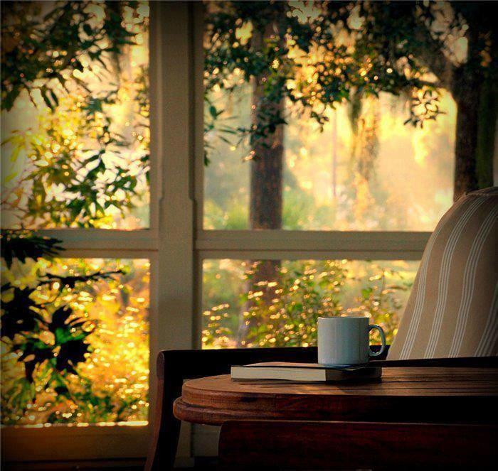 imagem a usar janela cafe livro.jpg
