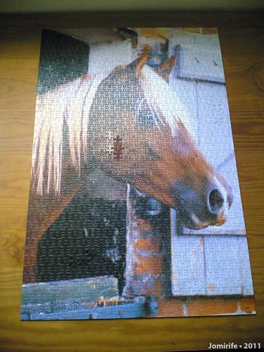Puzzle do Cavalo (2)