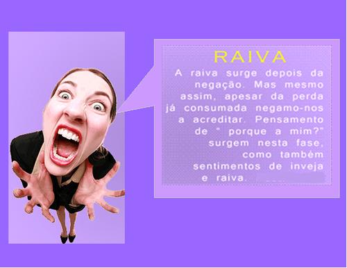 Raiva2.png