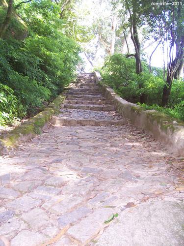 Sintra: Pena/Mouros - Escadas subida