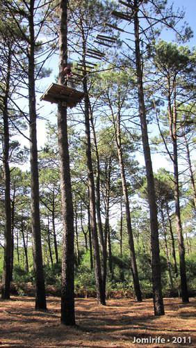 Parque Aventura: Ponte de troncos lá no alto