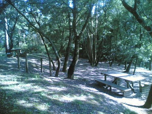 Parque de Merendas de Gatões: Mesas (M-o-V)