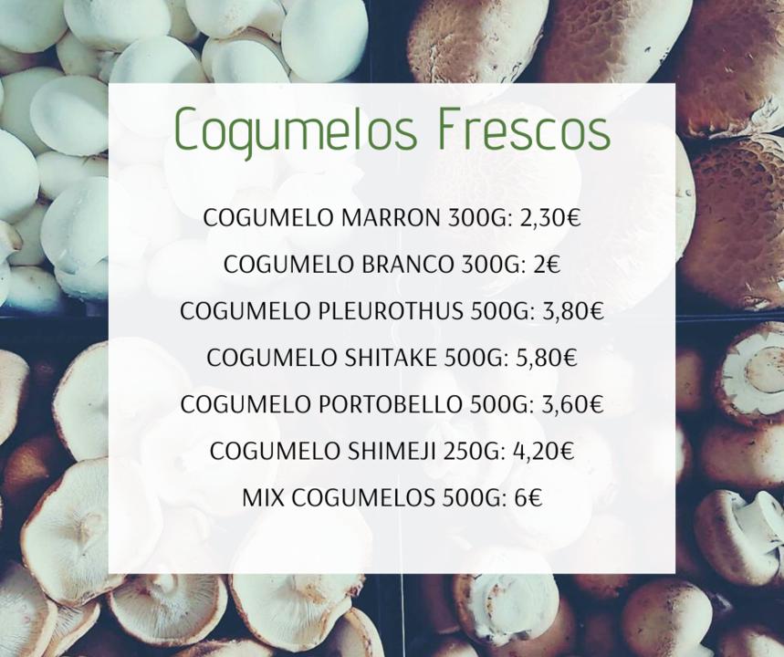 Cogumelos20e21Fev.png