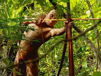 amazonianhunting_175ttqi-175ttsi.jpg