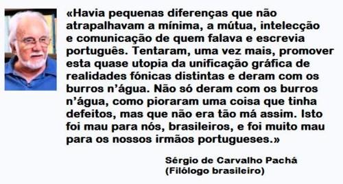 SÉRGIO PACHÁ.jpg