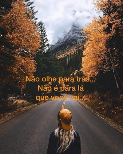 FB_IMG_1482130085129.jpg