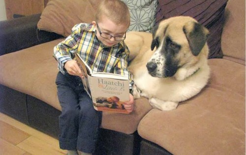Menino e cão a ler.jpg