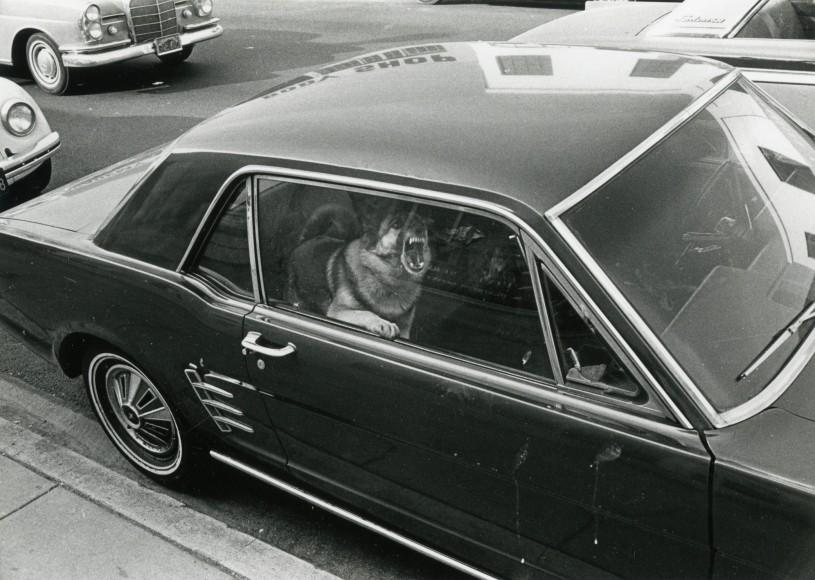 Los Angeles, 1971 II.jpg