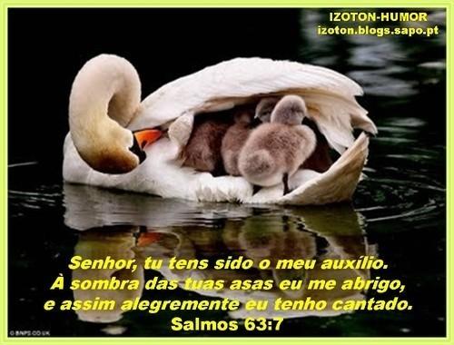SALMOS 63 (2).jpg