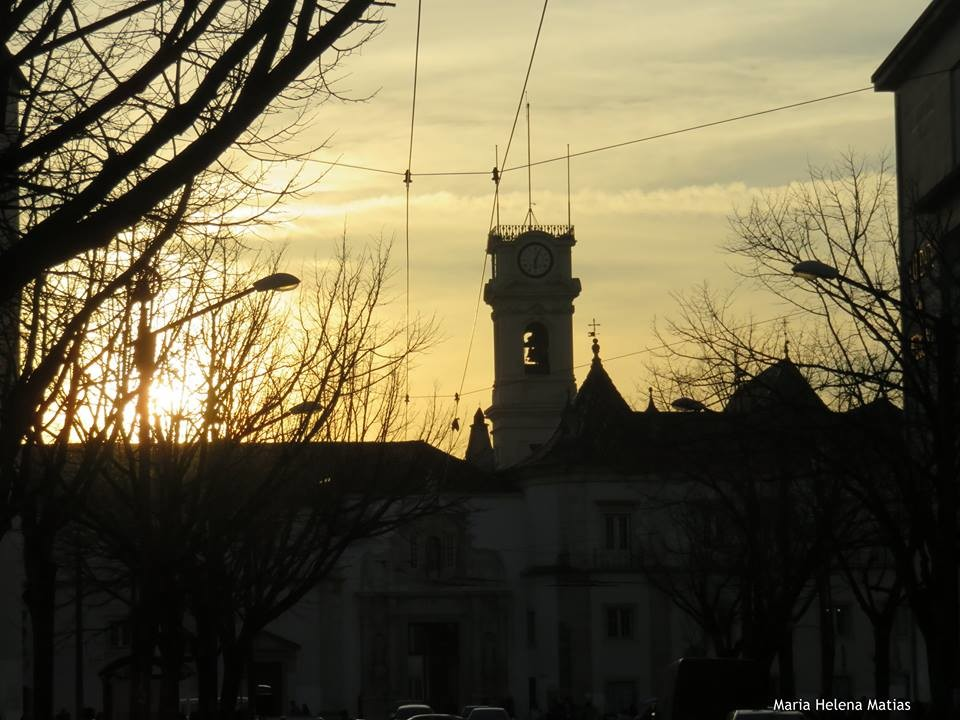 Torre da Universidade.jpg