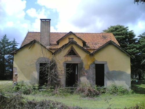 Casa amarela em Santana: Simetria nas traseiras