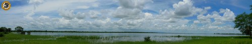 Panoramic floodplain.jpg