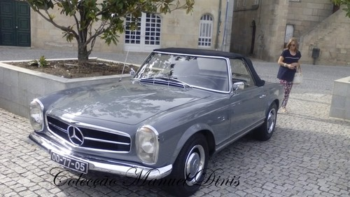 XXXIV Passeio Mercedes-Benz  (15).jpg