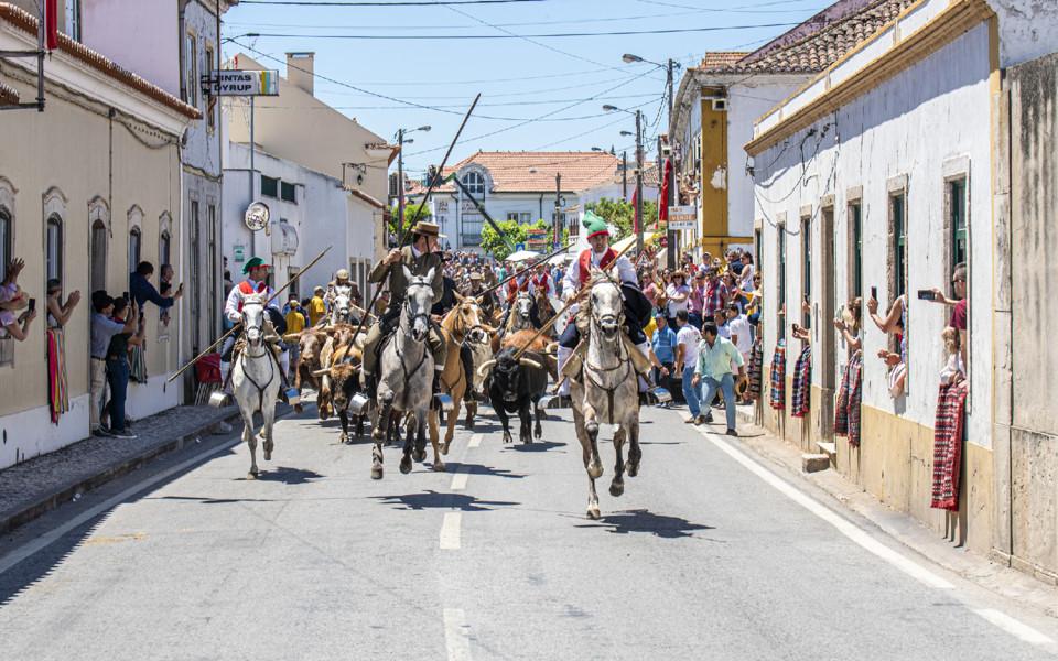 ENTRADA DE TOIROS_CHAMUSCA.jpg