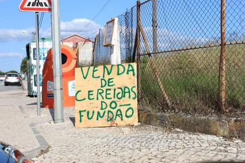 Cereijas do Fundão, Pegões (L.Gonçalves, 2012)