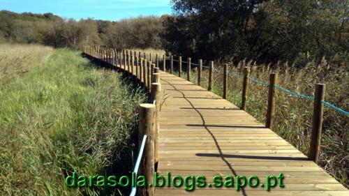 Passadico_Esmoriz_15.jpg