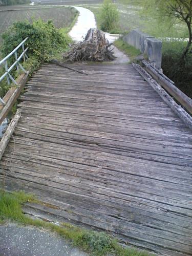 Antiga ponte de madeira em Pelames