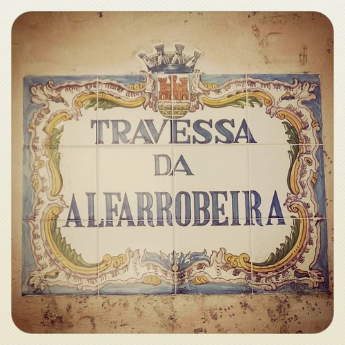 rua_alfarrobeira.jpg