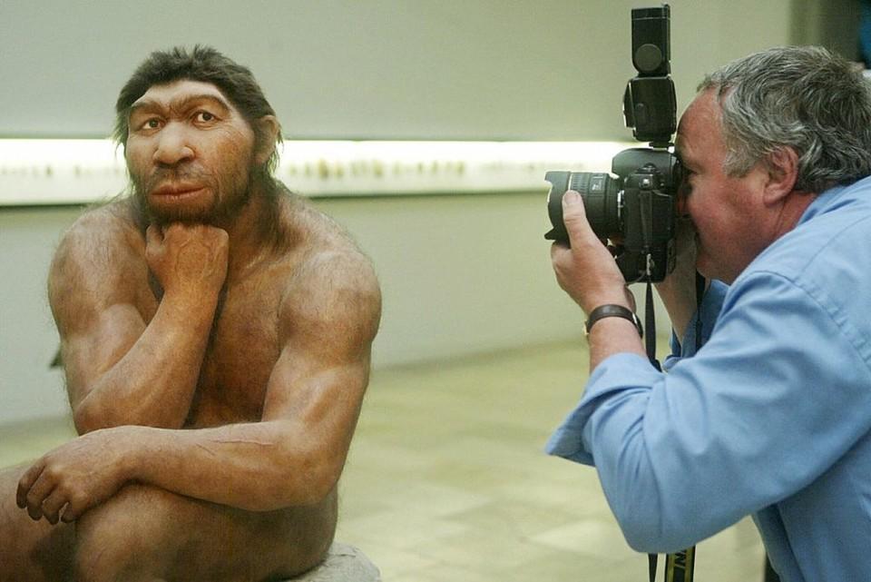 Homo Sapien moderno.jpg