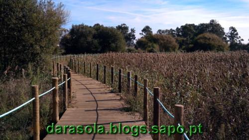 Passadico_Esmoriz_18.jpg