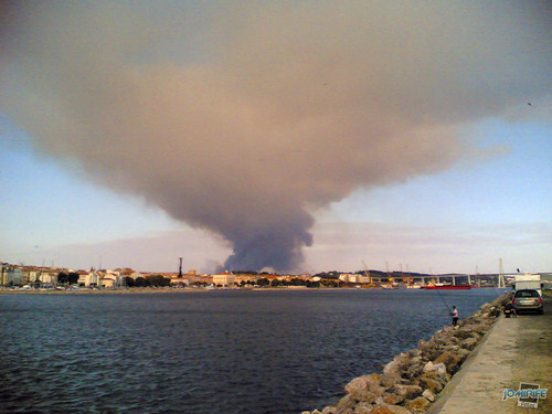 Incêndio nos arredores da Figueira da Foz