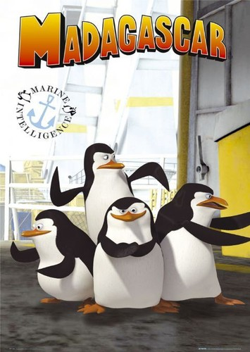 os pinguins de madagascar COR