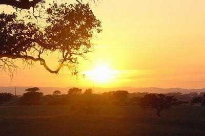 O Sol no Alentejo