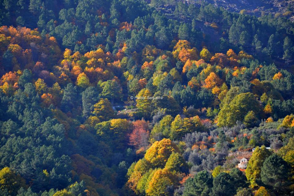 Outono...na Serra - HS .jpg