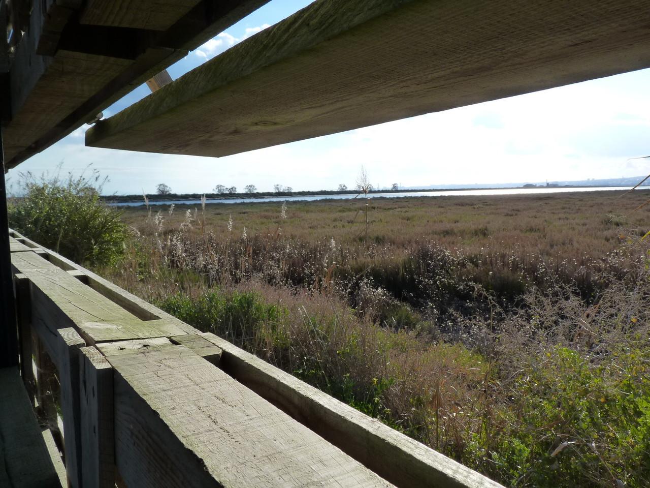 Parque Linear Ribeirinho do Estuário do Tejo (4).
