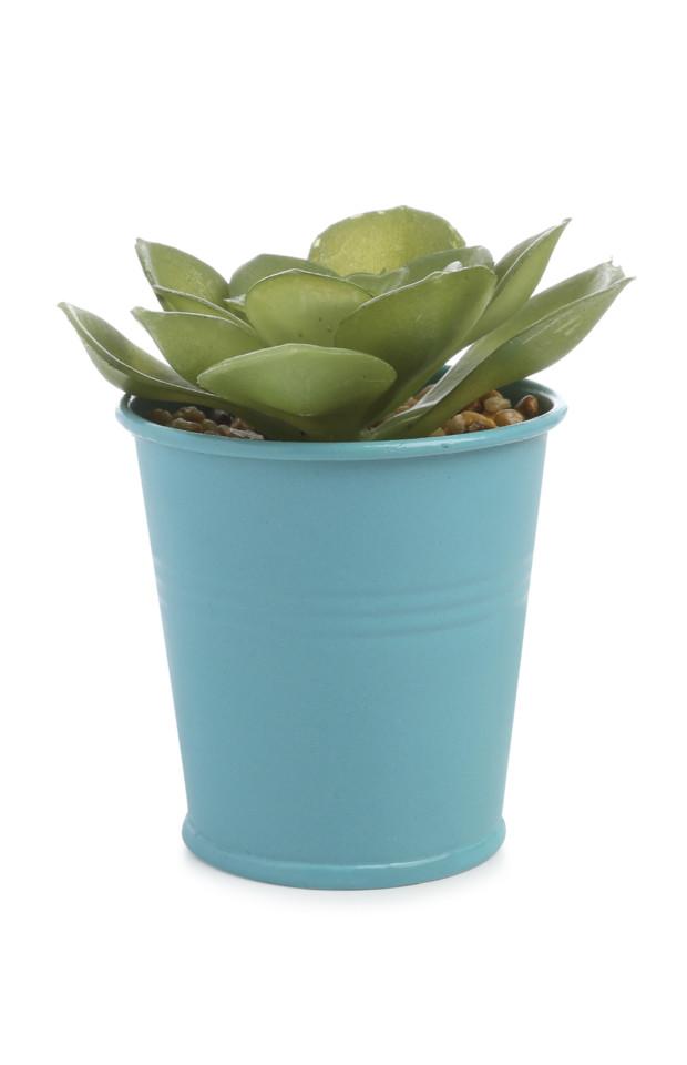 Kimball-4815003-Faux Plant Coloured Tin blue, ROI