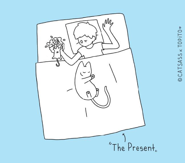 Cat Ass-07.jpg