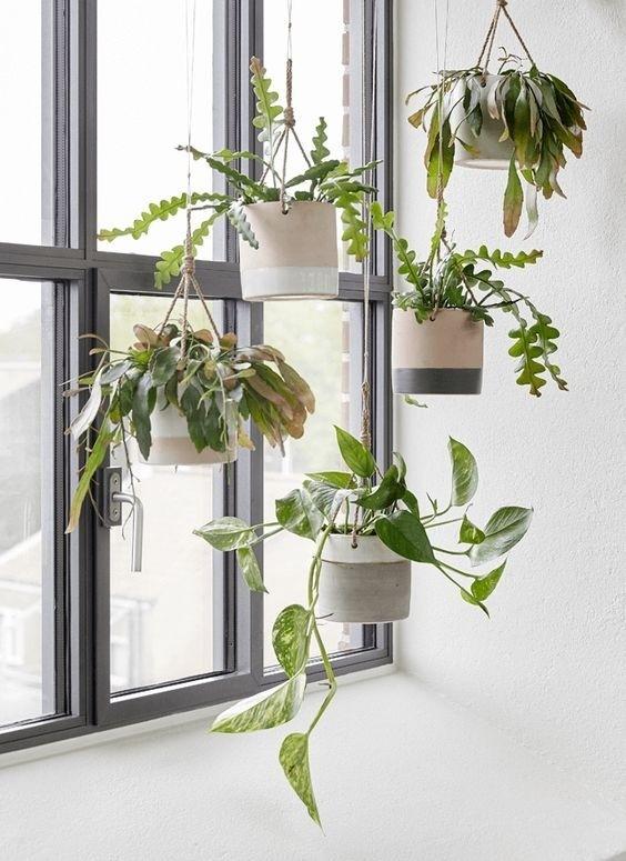 Refresque o design da sua casa com uma decoração verde (Imagem: www.simplythesimple.wordpress.com)
