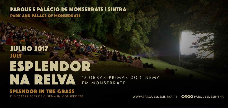Cinema_NoticiaGrande960x456.jpg