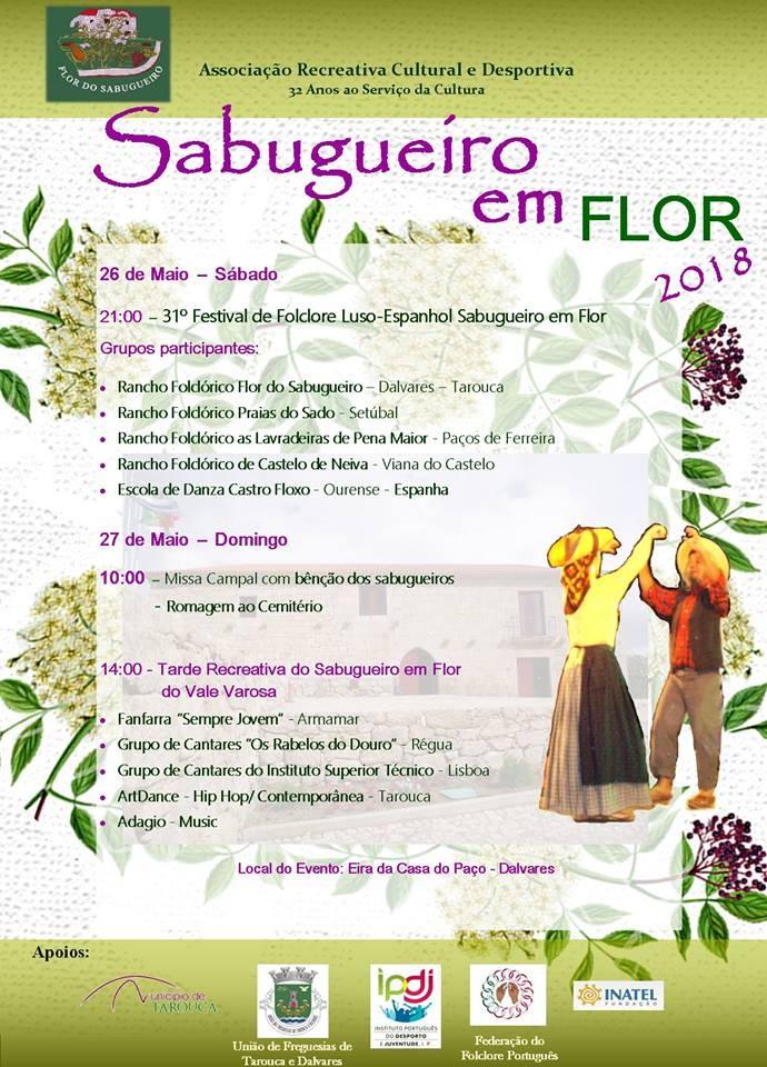 Sabugueiro em Flor 2018