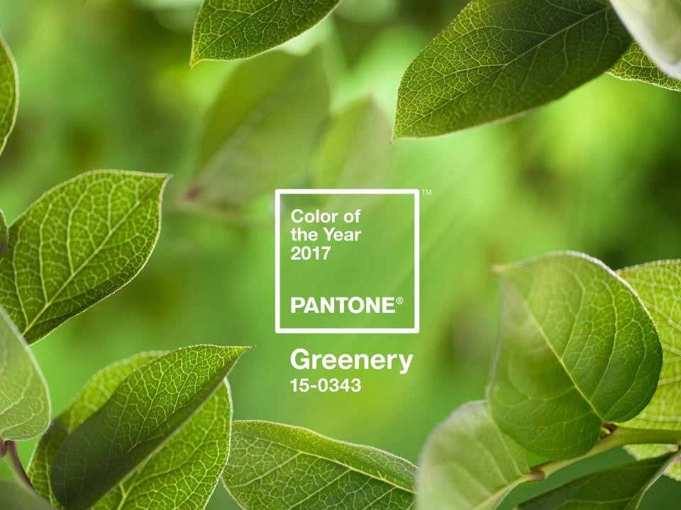 PANTONE-Color-of-the-Year-2017-Greenery-15-0343-le