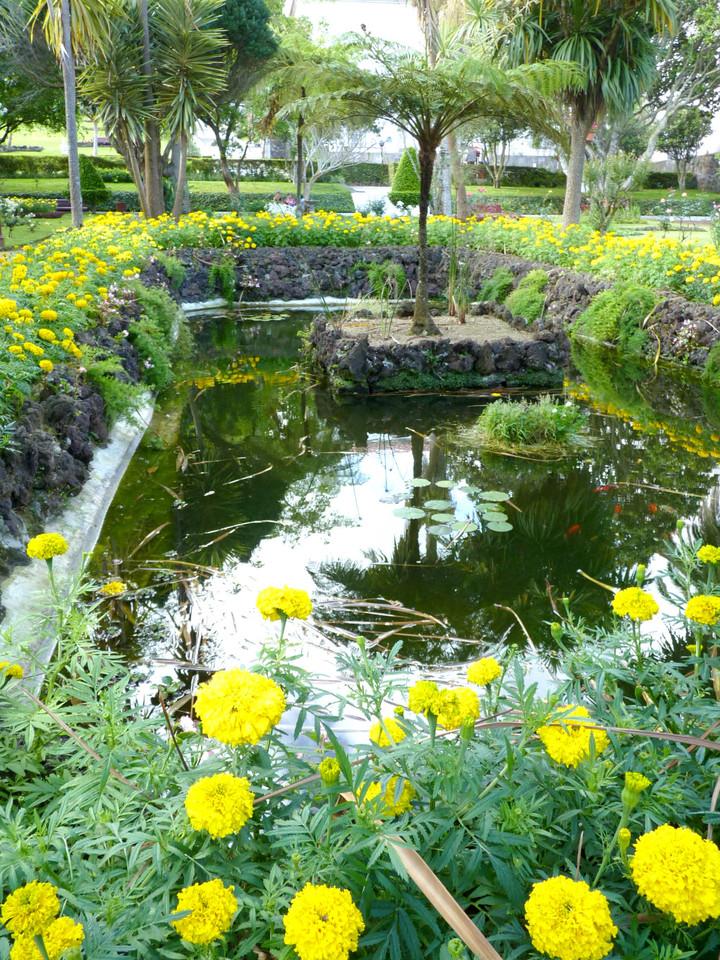 Angra - Jardim Duque da Terceira (44).jpg