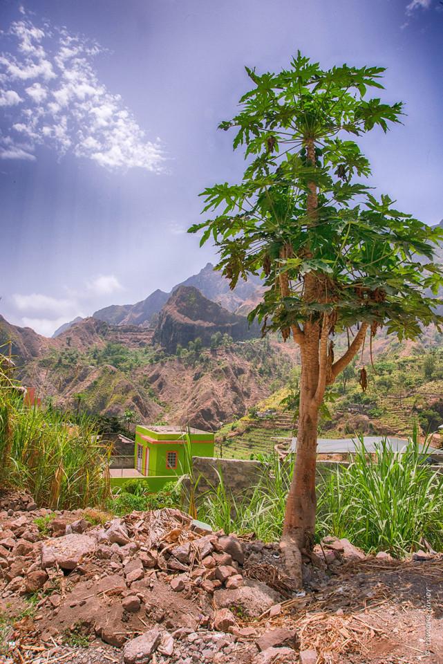 2017- 12º dia - Cabo Verde-Santo Antão (Caminhad
