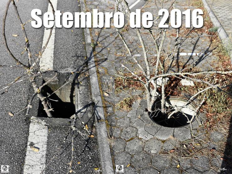 01 Setembro 2016 - 740.jpg