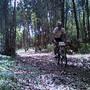 Coimbra XCM BTT Abrunheira - Bike no pinhal (3)