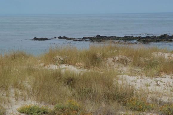 Carr praia e dunas