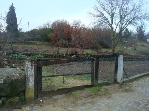 Campo d'Égua