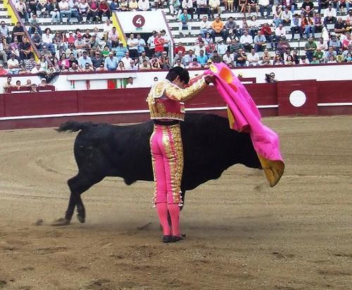 Temple certo e firme de Miguel Angel Perera...